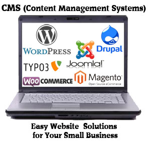 cms-for-small-business